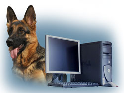 Как защитить персональный компьютер?
