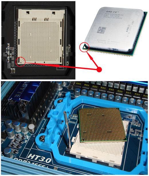 Сокет и процессор AMD